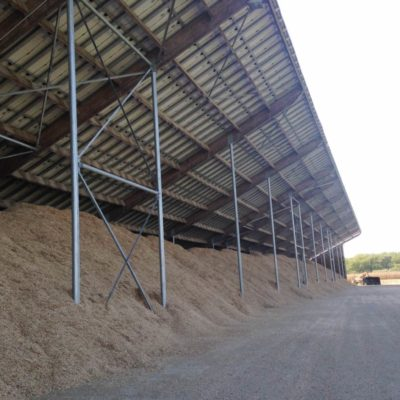 hangar miscanthus longueur