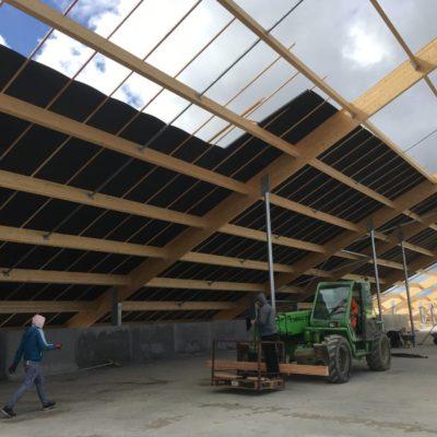 Mars 2019 - Pose du toit provisoire