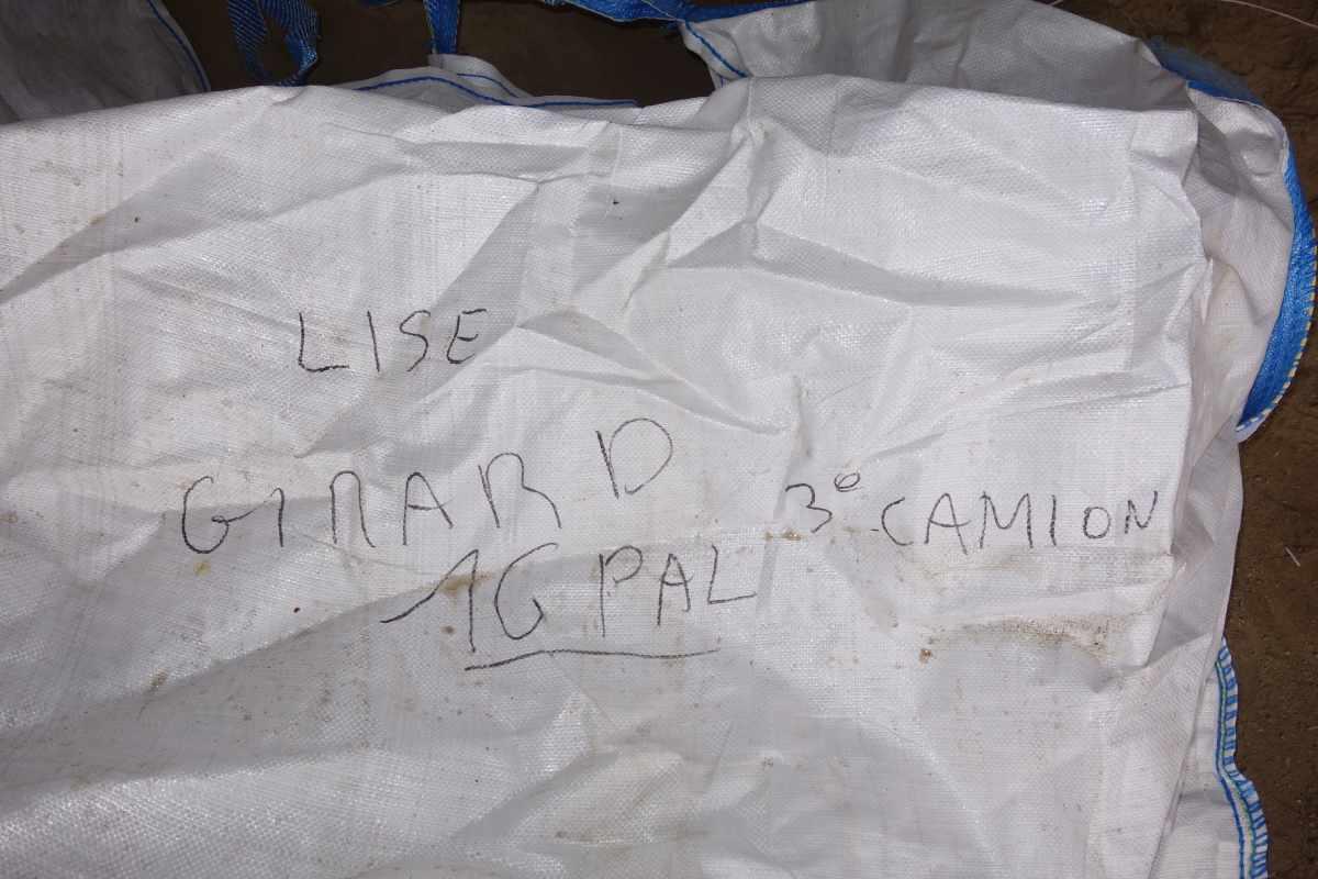 big bags rhizomes miscanthus
