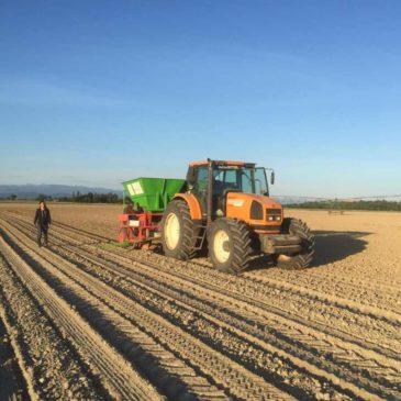 Le chantier de plantation